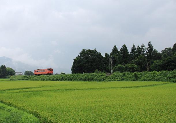 Img_12812tokusakiha47